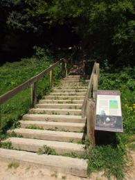 A photograph of the steps leading up toward the entrance of Robin Hood Cave at Creswell Crags Museum and Heritage Centre