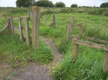 Dormans path
