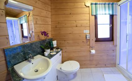 toilet, shower and sink in bathroom