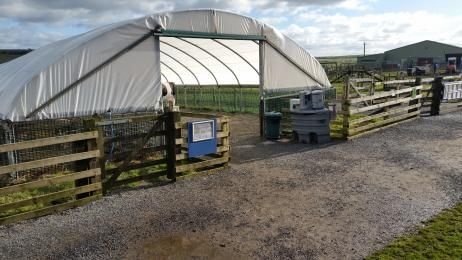 Entrance to Polytunnel 2