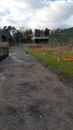 Gravel Path to the Sheep Race/Tractor Ride & The Ark