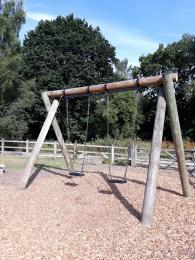 The Junior Swings