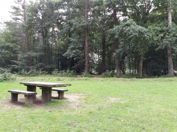Picnic site in overflow parking area