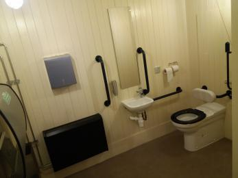 view of accessible toilet