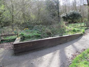 Raised pond in Wildlife Garden