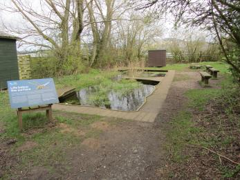 One of the two ponds at the Gillman hide