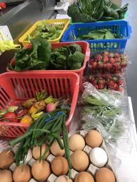 Fresh delivery of Coll produce