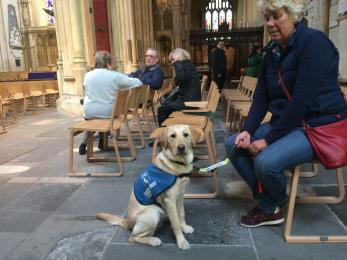 Assistance Dog in the Abbey