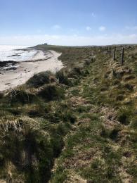 Beach Trail access to beach