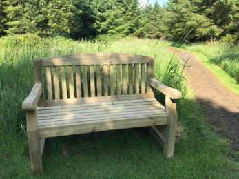 Benches along the paths
