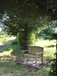 Benches and paths around the grounds