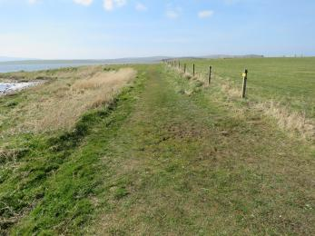 Brodgar nature reserve footpath in summer