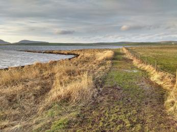 Brodgar nature reserve footpath in winter