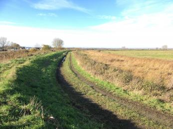 Path surface from mill towards accessible parking and Buckenham Hide