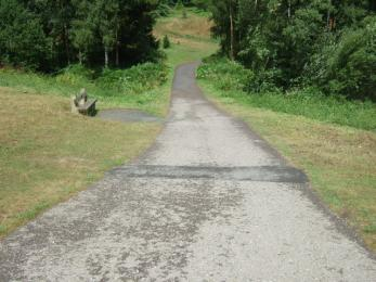 Example tarmac path to the tree collection