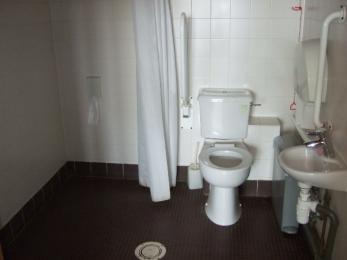 Disabled toilet showing side access