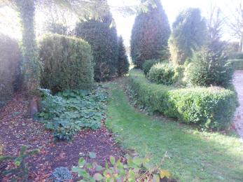 Garden path to the garden