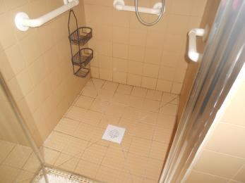 Handrails in shower