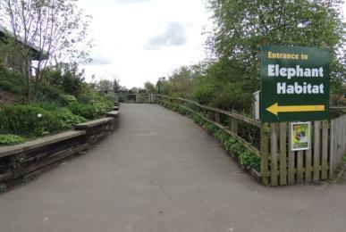 Path to Elephant House