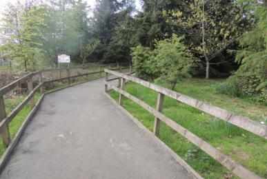 Wheelchair accessible path in Lemur Land