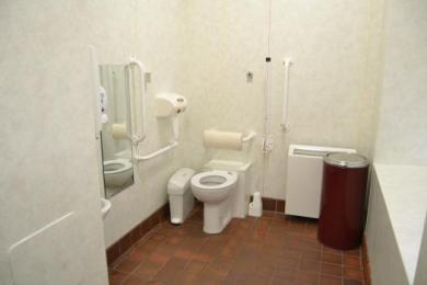 Institute disabled toilet