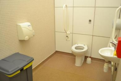Inside School disabled toilet