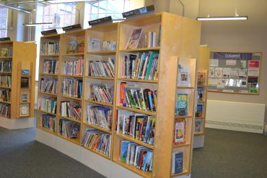 This photo shows one of the bookshelves in the library.