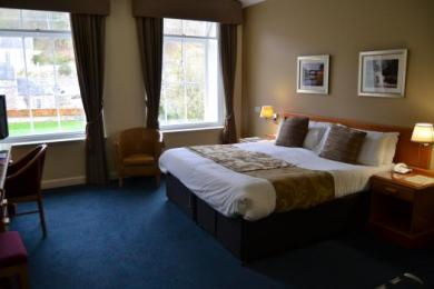Standard Accessible Room