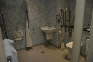 Standard Accessible Room Bathroom