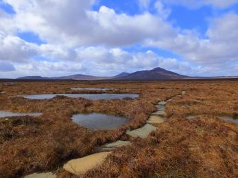 Example of Dubh-lochain flagstone trail