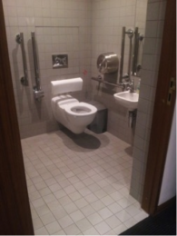 Accessible toilet view from entrance door