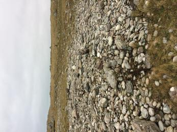 A smaller boulder field which is made mainly of small rocks. There is no path.