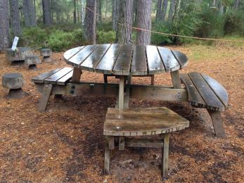 Round wooden picnic bench with designated wheelchair space
