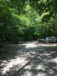 Main car park with hard standing, compact gravel surface. Dappled light and overhanging trees