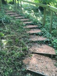Another staircase on the Scarp Trail