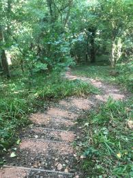 A further set of steps on the Scarp Trail