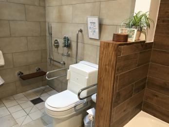 Closomat wash & dry toilet, grab rails around toilet, shower seat, wheel in wet room, sink next to toilet.