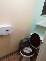 Interior of cubicle (same in both toilets).