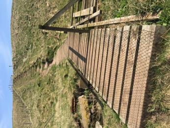 bridge and steep steps