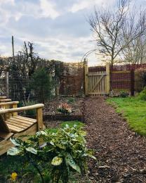 Garden - winter 2018
