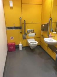 Photo showing the spacious accessible toilet on the ground floor of The Novium Museum
