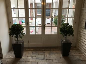 Alternative Entrance To Conservatory