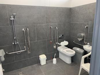 Accessible toilet with shower
