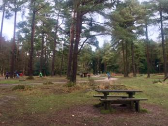 Bullers Hill picnic area.