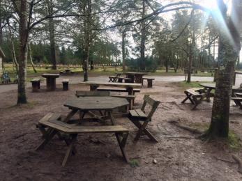 Hub picnic  area.
