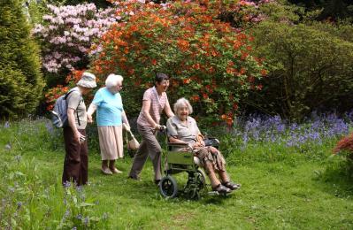 Westonbirt in spring