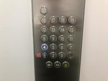 Illuminated lift buttons