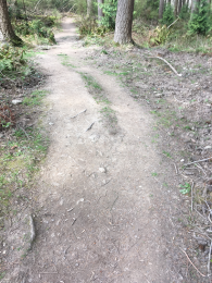 Path to lower hide