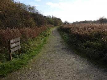 Main trail heading right towards First, Townend and Singleton Hides along compacted limestone path