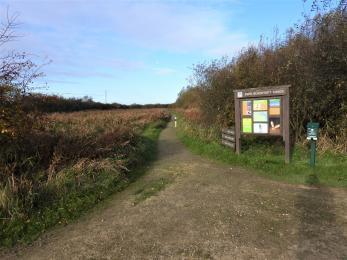 Head west along Main trail's compacted limestone path to Xerox and Marshland hides through coppice and reed bed.